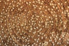 Casulos do sem-fim de seda nos ninhos brancos Foto de Stock