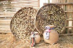 Casulos do sem-fim de seda nos ninhos brancos Fotos de Stock