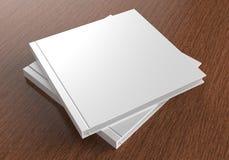 Catálogo branco vazio, compartimentos, livro para a apresentação ascendente do projeto da zombaria 3d rendem a ilustração Imagem de Stock