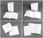 Catálogo vazio, folheto, compartimentos, zombaria do livro acima Fotos de Stock