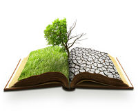 Catástrofe natural criativa do aquecimento global da paisagem do conceito foto de stock royalty free