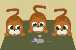 Cat. A vectorial image of cat vector illustration