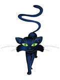 Cat. Illustration of black cat isolated on white background Royalty Free Stock Images