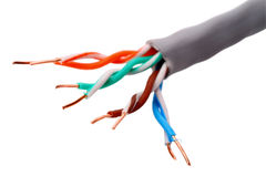 CAT 5 de câble de réseau photo stock