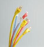 Cat 5 Network Cable Royalty Free Stock Photo