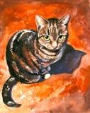 Cat. Royalty Free Stock Photo