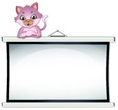 A cat above the empty bulletin board Stock Image