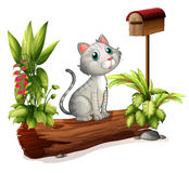 A cat above a trunk near the wooden mailbox. Illustration of a cat above a trunk near the wooden mailbox on a white background Royalty Free Stock Photo
