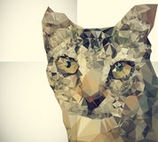 Cat. Abstract geometric style cat background Stock Image