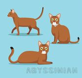 Cat Abyssinian Cartoon Vector Illustration. Animal Character EPS10 File Format Stock Images