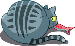 Cat in the act. Vector illustration of a fat cat caught in the act stealing fish Royalty Free Stock Photo