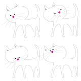 Cat Acting Cute blanca Imágenes de archivo libres de regalías