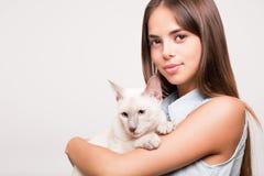 Cat affection. Stock Photos