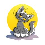 Cat against the moon royalty free stock photo