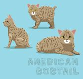 Cat American Bobtail Cartoon Vector Illustration Royalty Free Stock Image