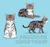Cat American Shorthair Cat Cartoon Vector Illustration Stock Photography