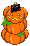 Cat And 3 Pumpkins Vector Royalty Free Stock Photos