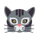Cat Animal Carnival Mask Felino selvaggio o domestico Immagine Stock