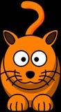 Cat, Animal, Feline, Kitty, Orange Stock Photos