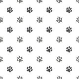 Cat Animal Paw Pattern sans couture Photo stock