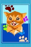 Cat Animal Poster Fotografering för Bildbyråer