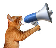 Cat Announcement. Concept as a generic feline holding a bullhorn or megaphone to announce news or promote pet and veterinary issues or animal marketing and stock illustration
