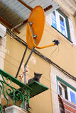 Cat and antenna. At lisbon portugal royalty free stock image
