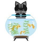Cat with aquarium. On white background Stock Photos