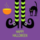 Cat arch back. Cauldron green potion. Witch legs with striped socks and shoes. Happy Halloween. Greeting card. Flat design. Violet Stock Images