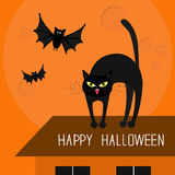Cat arch back. Kitty on roof. Yellow eyes, fangs, curl whisker. Flying bats. Happy Halloween card. Moon, house, windows. Royalty Free Stock Photo