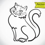 Cat art drawing high quality vector Royalty Free Stock Photography