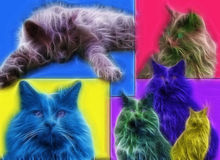 Cat Art Stock Images