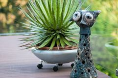Cat artwork standig in front of a succulent cactus on a terrace royalty free stock photos