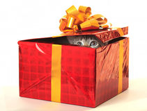 Cat as a gift. Cat looks out from gift wrapping Stock Photo