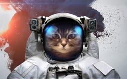 Cat Astronaut i yttre rymdmodern konst Beståndsdelar av denna avbildar möblerat av NASA royaltyfria foton