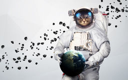 Cat Astronaut in outer space modern art. Elements of this image furnished by NASA. Royalty Free Stock Photography
