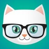 Cat avatar Stock Photo