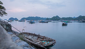 Cat ba island Stock Images