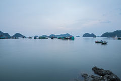 Cat ba island Royalty Free Stock Photos