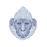 Cat Ba langur Head Mandala. Illustration of a Cat Ba langur Head viewed front done in hand sketch drawing Mandala style Stock Image