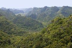 Cat Ba National Park Stock Images