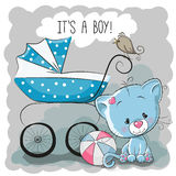Cat with baby carriage Stock Photos