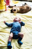 Cat and baby Stock Images
