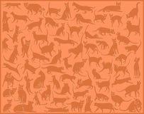 Cat background vector illustration