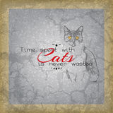 Cat background Royalty Free Stock Image