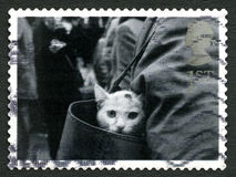 Cat in a Bag UK Postage Stamp. GREAT BRITAIN - CIRCA 2001: A used postage stamp from the UK, depicting an image of a pet Cat looking out of a handbag, circa 2001 Stock Photos