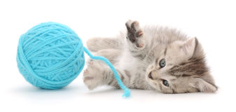 Cat with ball of yarn Royalty Free Stock Images