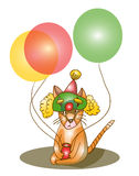 Cat with balloons Stock Photography