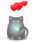 Cat with balloons in the form of heart. Grey fat cat with balloons in the shape of hearts, sitting with chamomile in teeth Royalty Free Stock Image