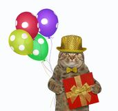 Cat with balloons and red box